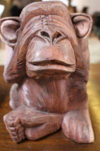 monkey-236864_1920